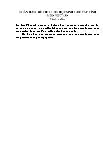 Ngân hàng đề thi chọn học sinh giỏi cấp tỉnh môn Ngữ văn 9 - Câu 2
